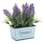 las plantas con flores que puedes mantener fácilmente en interiores es la lavanda